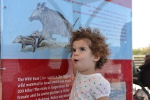 תמרול מסבירה על חיות הבר