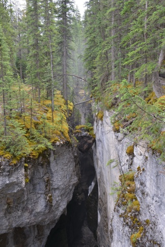 Maligne Canyon 3