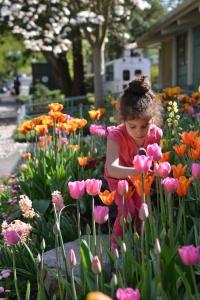 אביב גלית לוינסקי