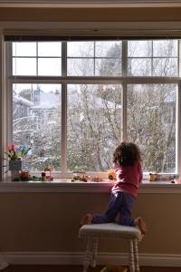 חלון ונקובר גלית לוינסקי